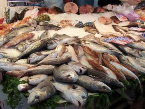 dorada-at-fish-market